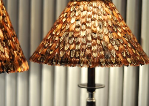 Lampshade Pheasant Male M