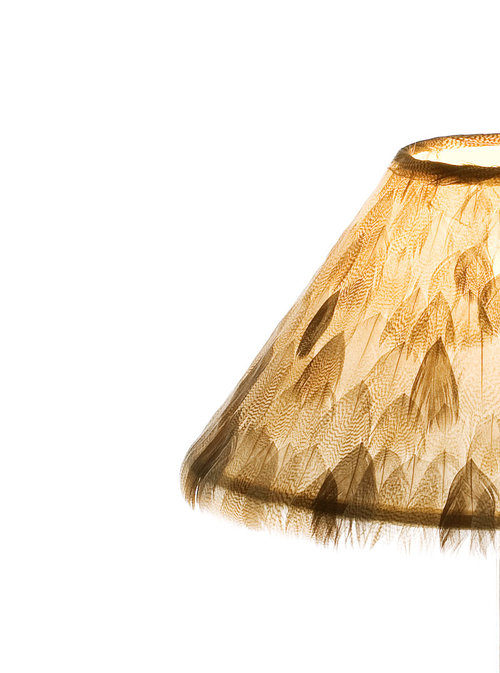 Lampshade Wild S.Feathers M