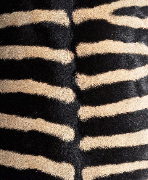 Lampshade Zebra Marty