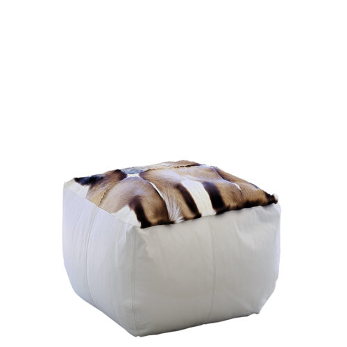 Cube Springbok
